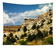 Rugged New Mexico Tapestry