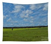 Rural Beauty Tapestry
