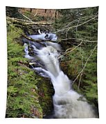 Rushing Montgomery Brook Tapestry