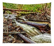 Rushing Stream Tapestry