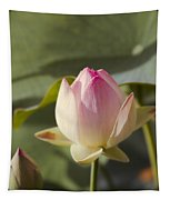 Sacred Lotus - Nelumbo Tapestry
