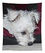Sad Puppy Tapestry