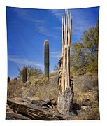 Saguaro Cactus Skeleton Tapestry