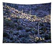 Saguaro Sunrise Tapestry