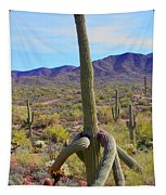 Saguaro With Down Twist Tapestry