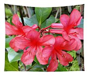 Salmon Pink In The Tropics Tapestry