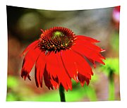 Salsa Red Coneflower Tapestry