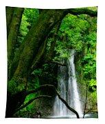Salto Do Prego Waterfall Tapestry