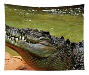Saltwater Crocodile By Kaye Menner Tapestry