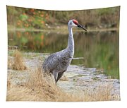 Sandhill Beauty By The Pond Tapestry
