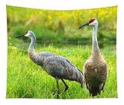 Sandhill Crains Tapestry