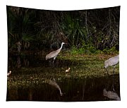 Sandhill Cranes And Chicks Tapestry