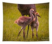 Sandhill Cranes Playing Tapestry