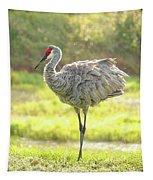 Sandhill Morning Fluff Tapestry