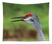 Sandhill Song Tapestry