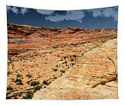 Sandstone Landscape Valley Of Fire Tapestry