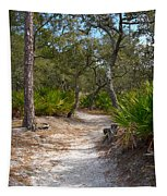 Sandy Path In Hunting Island South Carolina Tapestry