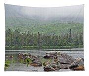 Sandy Stream Pond Tapestry