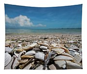 Sanibel Island Sea Shell Fort Myers Florida Broken Shells Tapestry