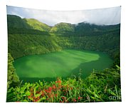 Santiago Lake Tapestry