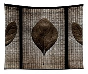 Sassafras Leaves With Wicker Tapestry