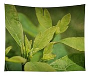 Sassafras Tree Tapestry