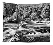 Sauble Falls Autumn Evening 3 - Paint Bw Tapestry