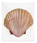 Scallop Shell Tapestry by Amy Kirkpatrick