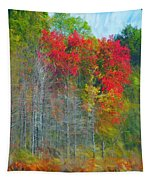 Scarlet Autumn Burst Tapestry