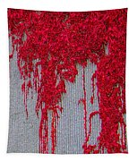 Scarlet Squiggle Tapestry