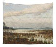Scene Of Chiemsee, Moor Landscape Tapestry