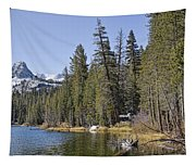 Scenic Beauty Tapestry