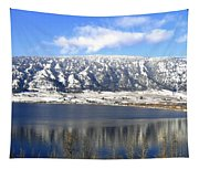 Scenic Wood Lake Tapestry