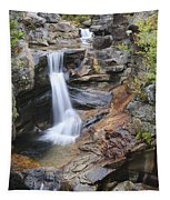 Screw Auger Falls - Maine  Tapestry
