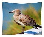 Sea Gull Of Boca Grande Tapestry