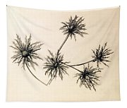 Sea Holly Tapestry