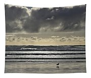 Seagull At Cannon Beach Tapestry