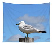 Seagull Beach Art - Sitting Pretty - Sharon Cummings Tapestry