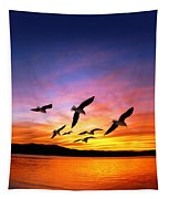 Seagull Sunset   Tapestry