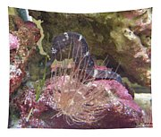 Seahorse1 Tapestry