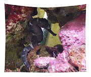 Seahorse3 Tapestry