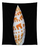 Seashell In Fishnet Tapestry