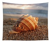 Seashell In The Sand Tapestry