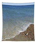 Seashore Tapestry