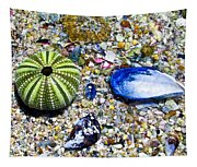 Seashore Colors Tapestry