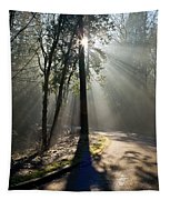 See The Light Tapestry