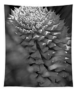 Seed Pod Black And White Tapestry