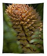 Seed Pod Tapestry