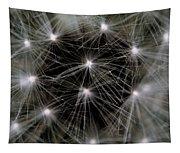 Seedy Tapestry