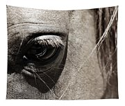 Stillness In The Eye Of A Horse Tapestry